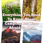 Everything You Need To Know About Camping But Were Afraid To Ask